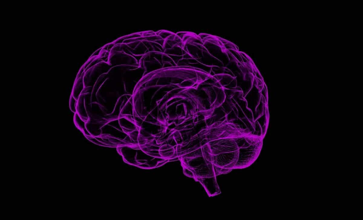 jak okreslic wiek twojego mozgu