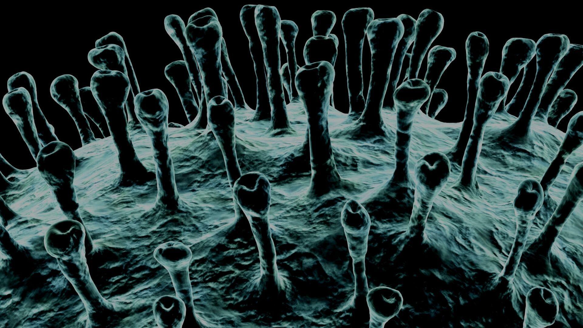 ingerencja czlowieka w srodowisko naturalne sprzyja pojawianiu sie chorob odzwierzecych