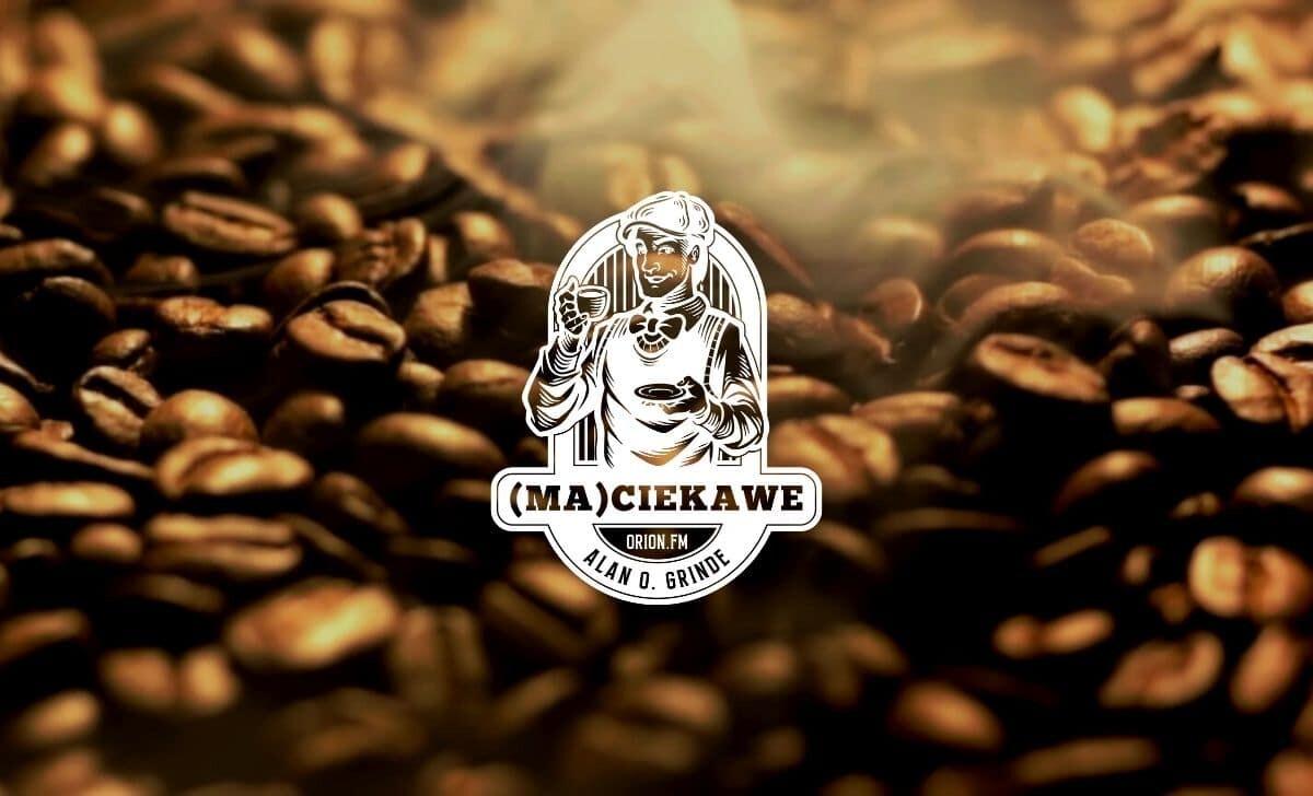 maciekawe 03 thumbnail