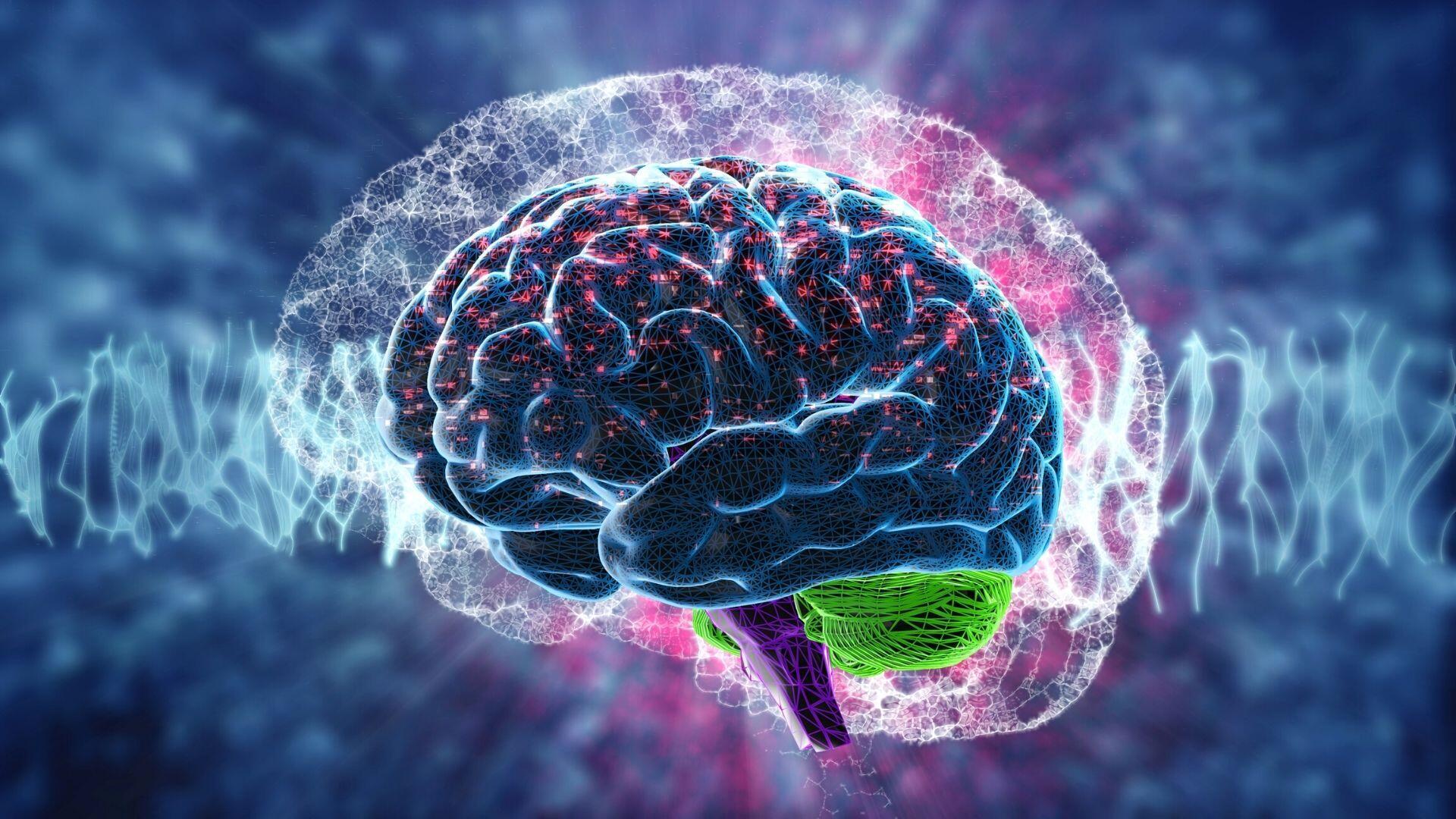 depresja moze redukowac ilosc substancji bialej w mozgu