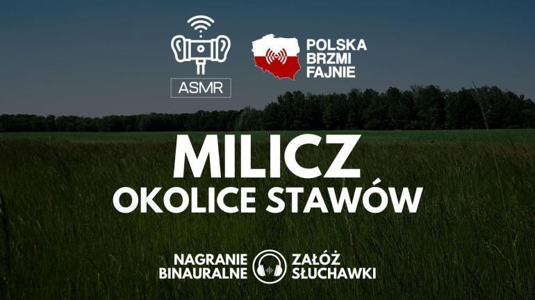 PBF26 Milicz